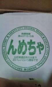 20101114130030